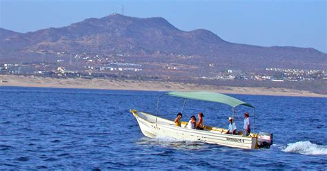 Boat Tour Cabo by Glass Bottom Boat Tour In Cabo San Lucas