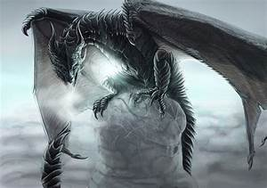 Wyvern | Throne of Glass | Pinterest | Seasons, Ice and ...