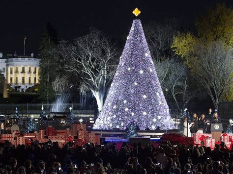 barack and michelle obama light national christmas tree