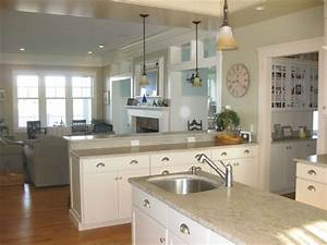 white kitchen cabinets quartz countertops kitchen and decor With kitchen colors with white cabinets with daniel tiger wall art