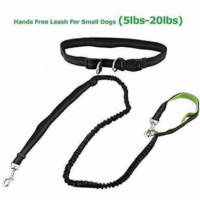 Dog Leash Lightweight Handle Hands Running Reflective