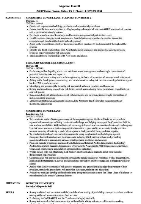 resume for risk consultant senior risk consultant resume sles velvet