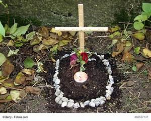 Katze Im Garten Begraben : katze oder hund im eigenen garten begraben darf man das ~ Lizthompson.info Haus und Dekorationen