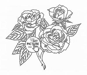 Realistic Roses coloring page for kids, flower coloring ...