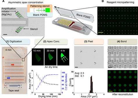 powered integrated microfluidic point  care