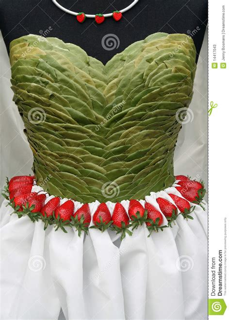 ls made from leaves dress top made from leaves stock photos image 14417043