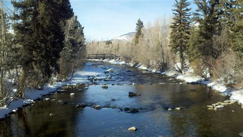 blue river fly fishing report silverthorne