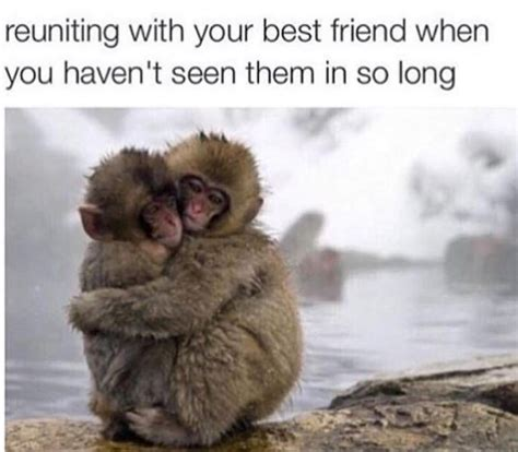 Best Friend Meme Reuniting With Best Friend Russian Memes