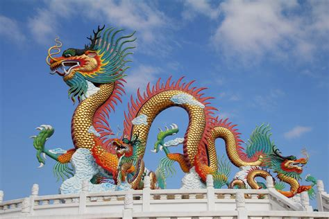Images Of Dragons Are Dragons Real Facts About Dragons