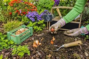 Garten Im September : ihr garten im septembertipps tricks bew sserung raintime gmbh ~ Whattoseeinmadrid.com Haus und Dekorationen