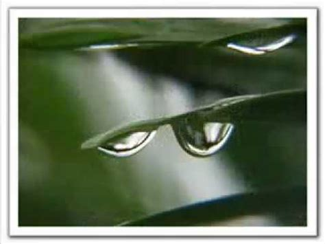 jose feliciano listen to the falling rain youtube listen to the falling rain jose feliciano mp4