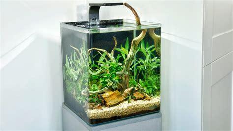 Aquascape Tutorial by Aquascape Tutorial How To Makeover A Shrimp Nano