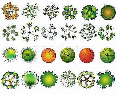 Symbols Landscape Symbole Architektonisch Gartengestaltung Holz Treetop