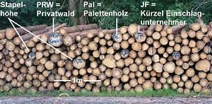 Raummeter Berechnen : baummarkierungen im wald und was sie bedeuten wald ~ Themetempest.com Abrechnung