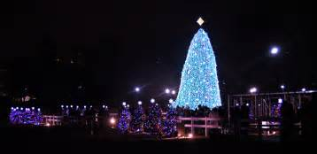 origin of christmas tree vermont best template collection