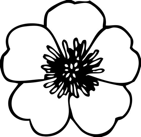 flowers coloring pages  flowers