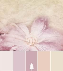 Color Palette Shabby Vintage Home Tree Atlas