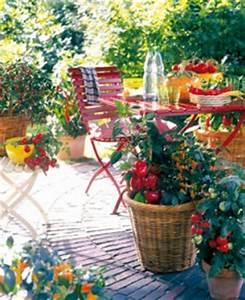 Plantes Amies Et Ennemies Au Potager : un balcon potager conseils plantes du potager et fruitiers ~ Melissatoandfro.com Idées de Décoration