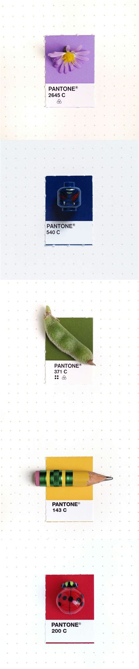 25 best ideas about pantone matching system on pms colour pantone paint and