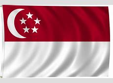 Flag of Singapore, 2011 ClipPix ETC Educational Photos