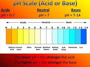 The Ph Scale With Examples Of Acids And Bases 17130 ...