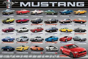 ford mustang  anniversary evolution history