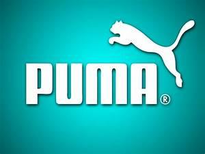 HQ Puma Wallpaper | Full HD Pictures