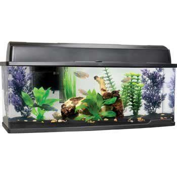 Petco Fish Aquarium Decorations by Pin By On Aquarium Supplies