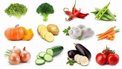 Vegetables Names Learning Learn Vegetable Veggies Kid