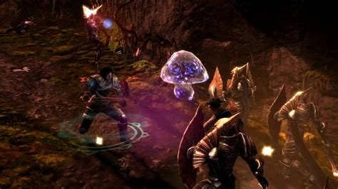influence dungeon siege 3 dungeon siege iii review gaming nexus