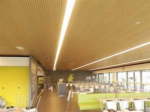 Pose De Faux Plafond : fp placoplatre ~ Premium-room.com Idées de Décoration