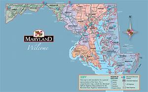 The Small Town Guide To Identifying An Eastern Shore Local ...