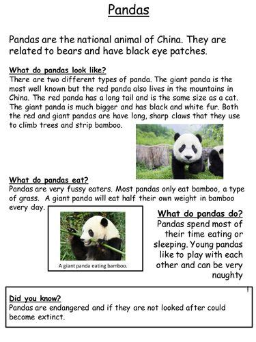 animal  chronological report examples teaching ideas