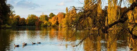 Garten Herbst Zurückschneiden by Tolle Herbst Spazierg 228 Nge In M 252 Nchen Das Offizielle