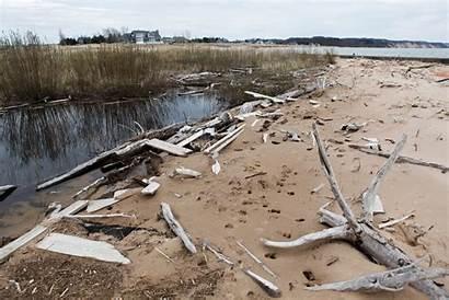 Debris Shoreline Lake Amounts Boaters Swimmers Copious