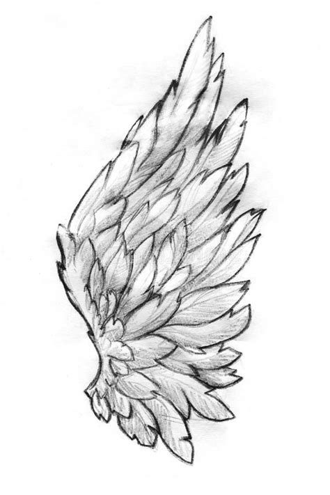 Pin by Carolina Ciliberto Viney on Frame Craft Ideas in 2019 | Wings drawing, Art sketches, Drawings
