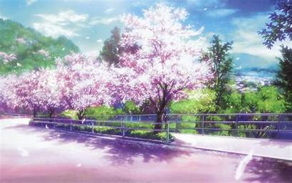Blossom Cherry Wallpapers Cave