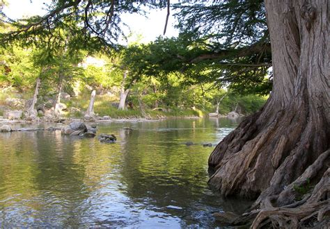 File:Guadalupe river state park.jpg - Wikimedia Commons