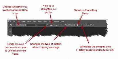 Photoshop Control Crop Panel Bar Tool Below