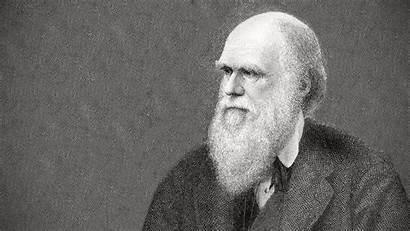Darwin Charles Wallpapers Selection Natural Biography Vision