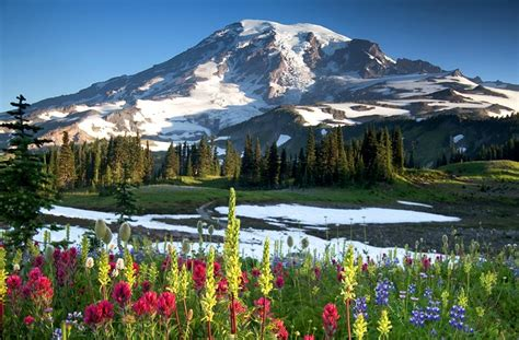 15 Toprated Tourist Attractions In Washington State