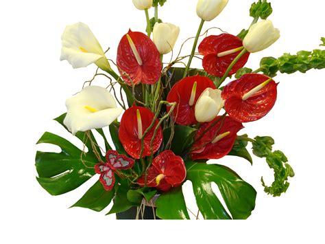 flower arrangement pics hawaiian tropical flower arrangements www pixshark com images galleries with a bite