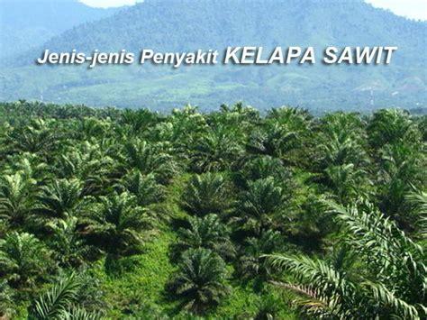 jenis penyakit berbahaya tanaman kelapa sawit