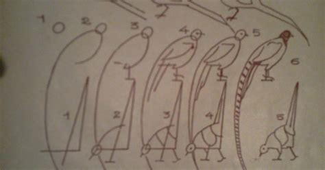 comment cuisiner un faisan dessins astuces pour debutants dessiner un faisan