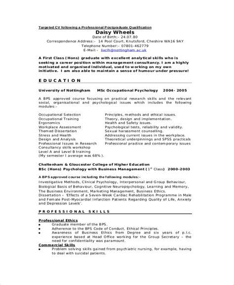 sample professional cv  documents   word