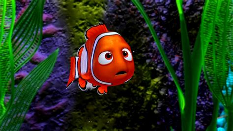 hd wallpaper wallpaper nemo hd