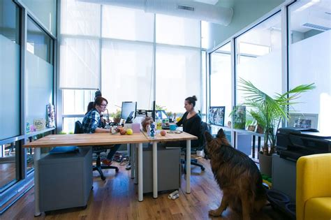 rent a desk nyc affordable coworking space nyc dedicated shared office