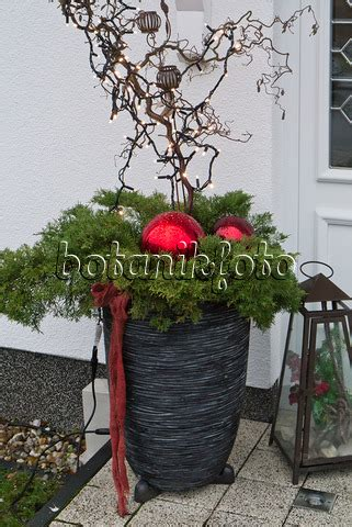 Bild Weihnachtlich Geschmückter Hauseingang 483055