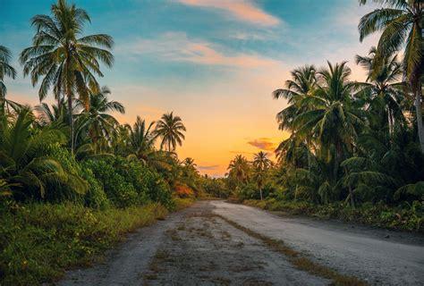 village road images hd  wallpaper