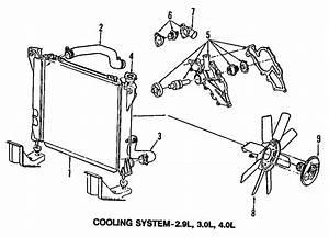 Ford Ranger Radiator Coolant Hose  3 0 Liter  Ranger  3 0l
